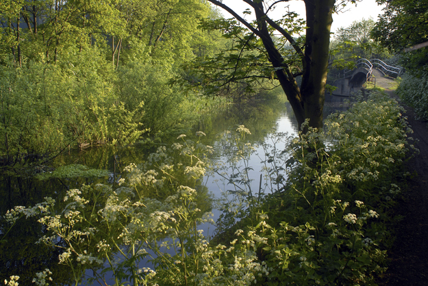The Old River Lee near Old Ford Lock. The Bridge crosses the beginning of Pudding Mill River. Spring 2006