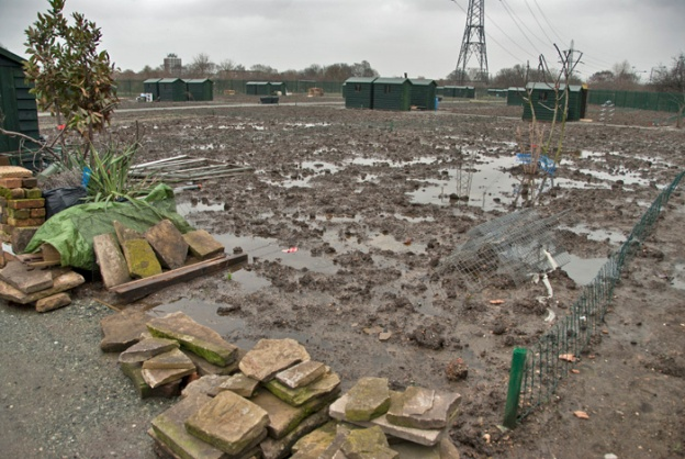 Waterlogged site. January 2008